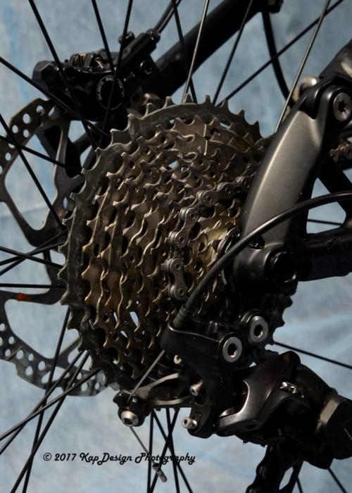 Dick Bike 2017